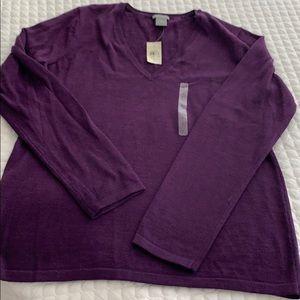 New Ann Taylor V neck sweater